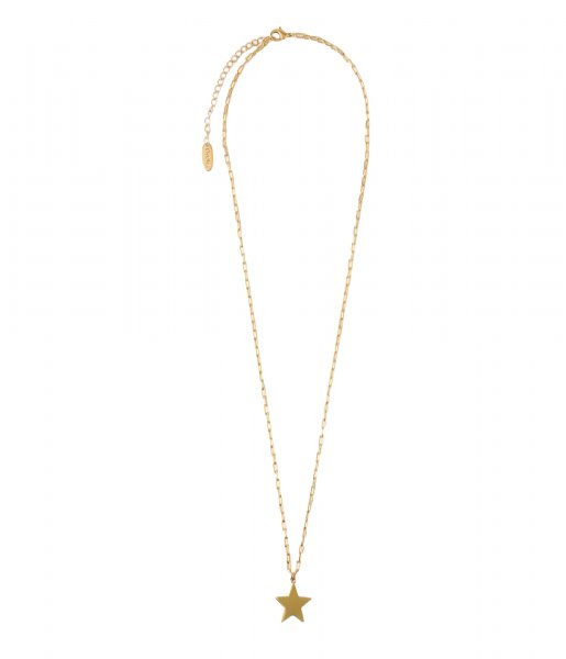 Orelia  Star Collar Length Necklace pale gold plated (ORE25159)
