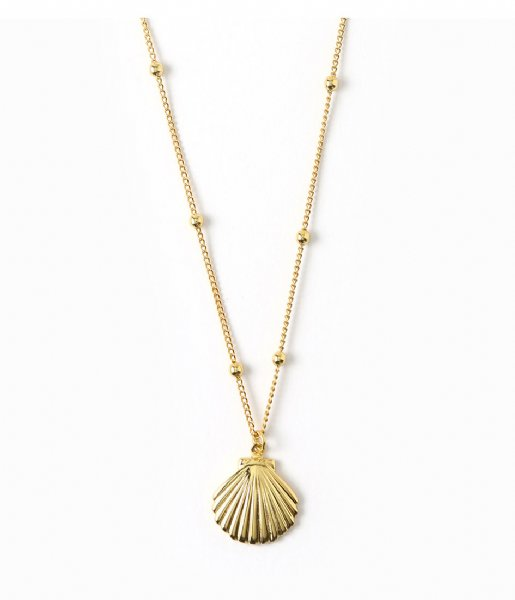 Orelia  Metal Shell Satellite Chain Necklace gold plated (ORE25419)