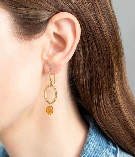 A Beautiful Story  Graceful Citrine Gold Plated Earrings gold plated (AW25134)