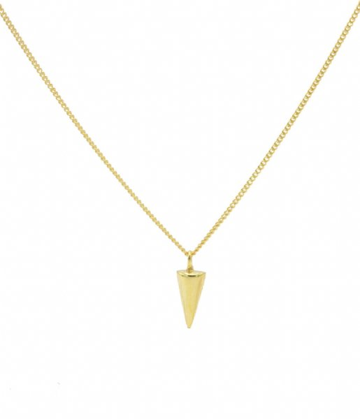 Karma  Karma Necklace Round Cone Zilver Goldplated (T196)